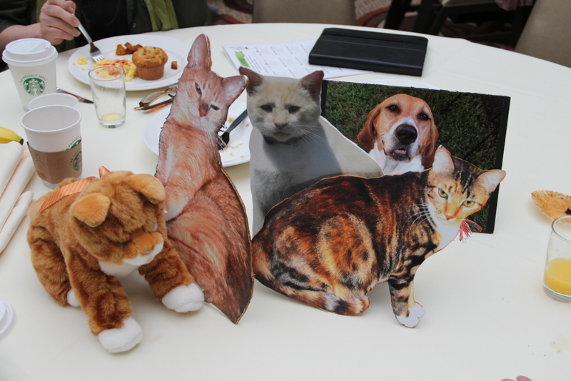 At breakfast people use cut put photos of their pets so that they can recognise each other from Twitter etc