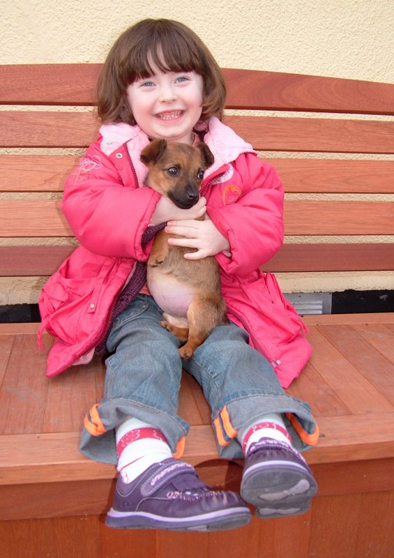 Tilly  A 12 Week Old Jack Russell Terrier Puppy Had A